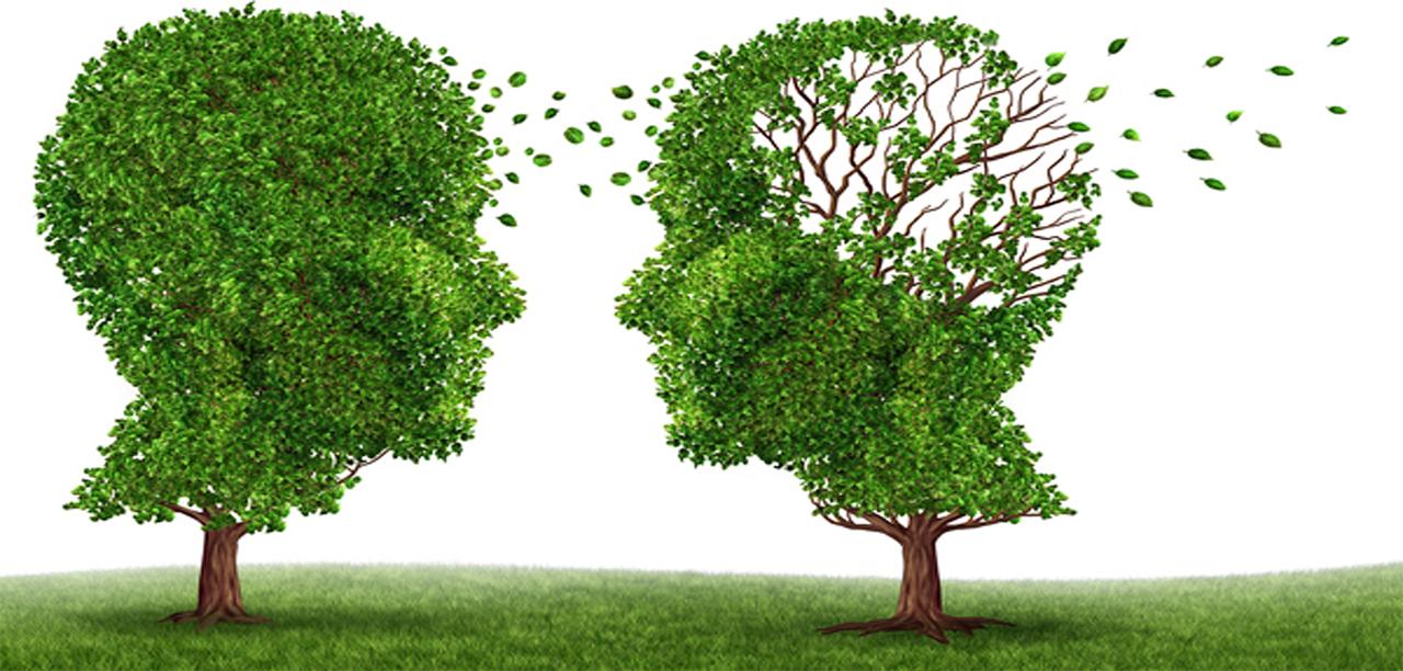 Τι είναι η άνοια και η Νόσος Alzheimer