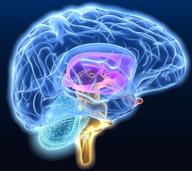 Συστατικά του εγκεφαλονωτιαίου υγρού στην διάγνωση της νόσου Αλτσχάιμερ